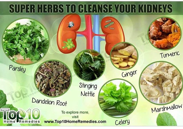 It is so important to support your kidneys during anti-cancer treatments. Adding fresh herbs to your daily diet is a simple and effective way to detox and boost function. #kidneyhealth #detox #letfoodbethymedicine #remissionkitchen #beatcancer #eattobeat