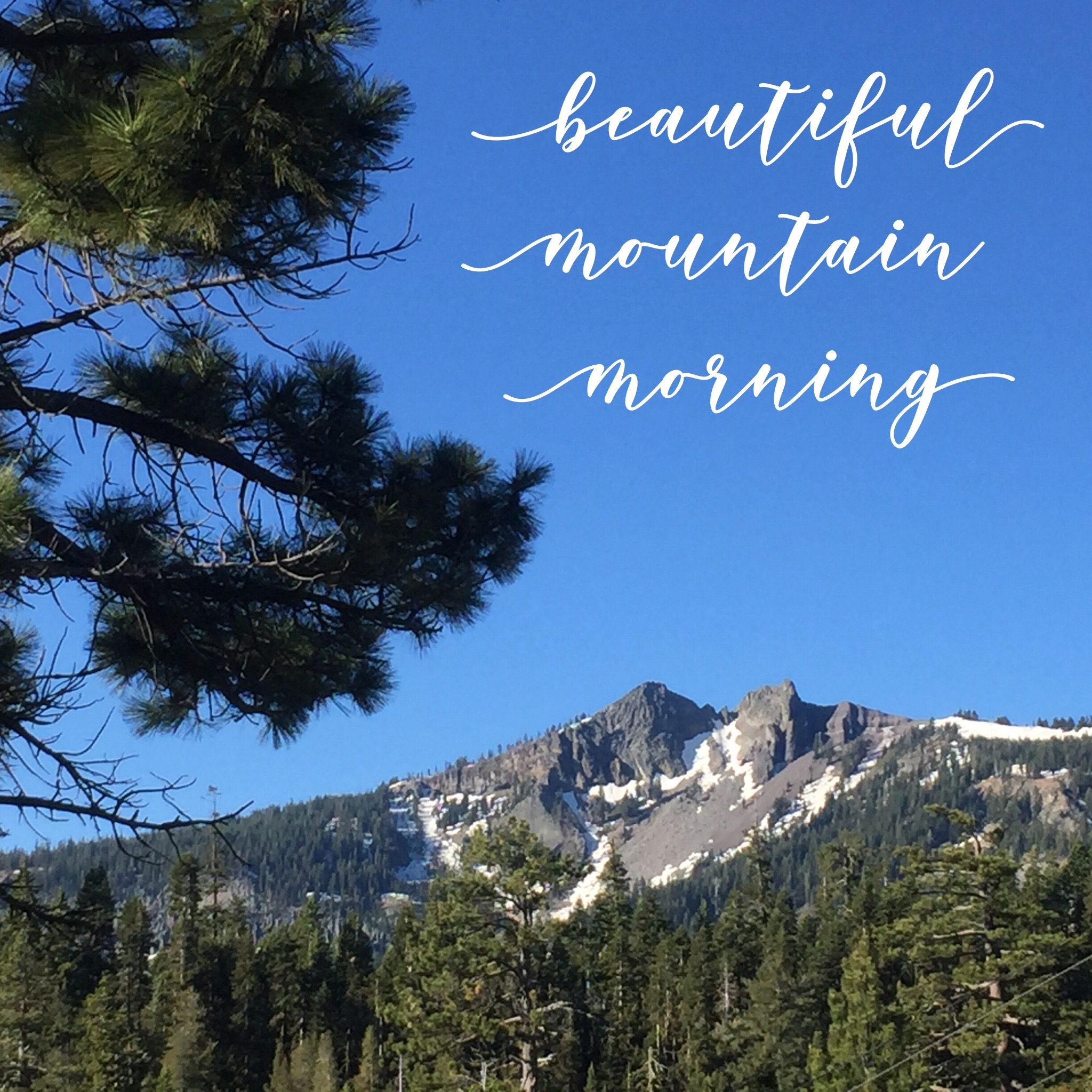 My morning view - Twin Peaks from Sherwood Meadow in Ward Canyon,