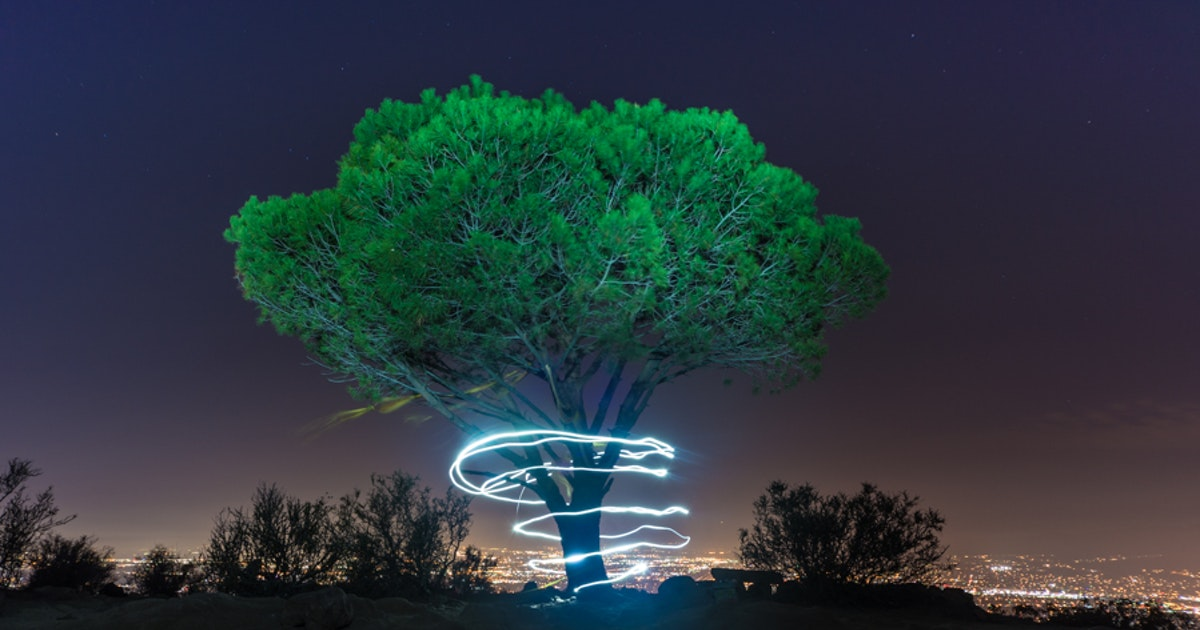 El Sabio de noche tomada por The Outband Collective