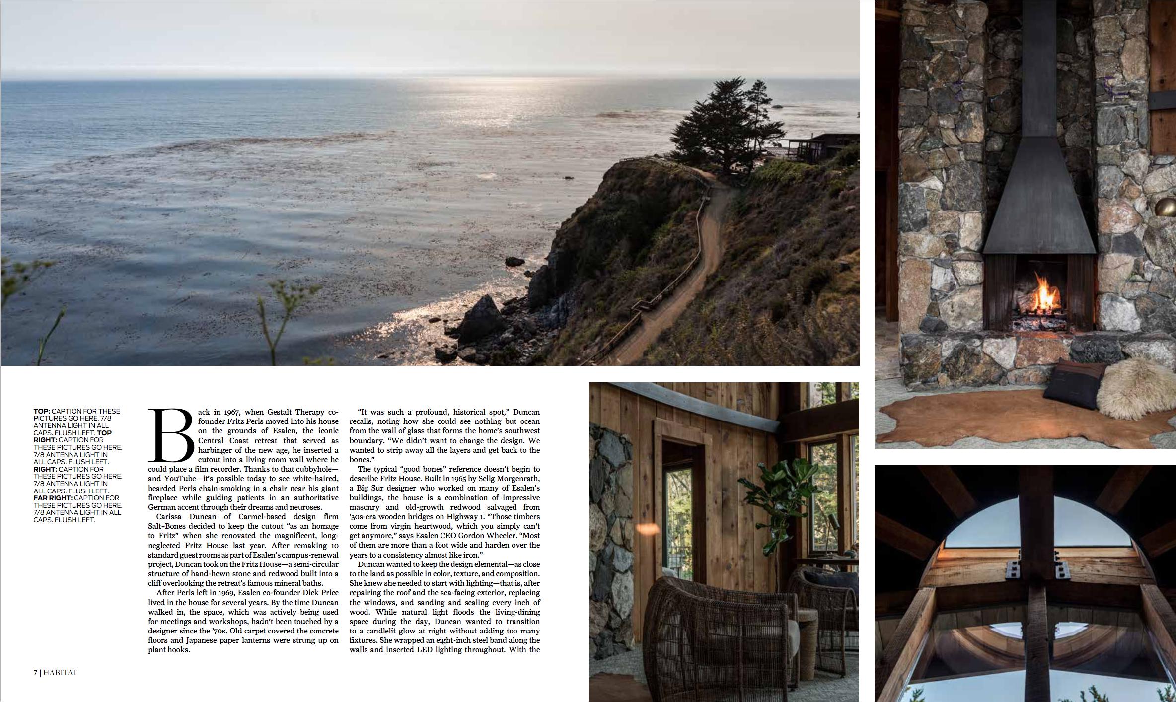 Salt + Bones featured in  Habitat SF . Photo by  Laure Joliet .