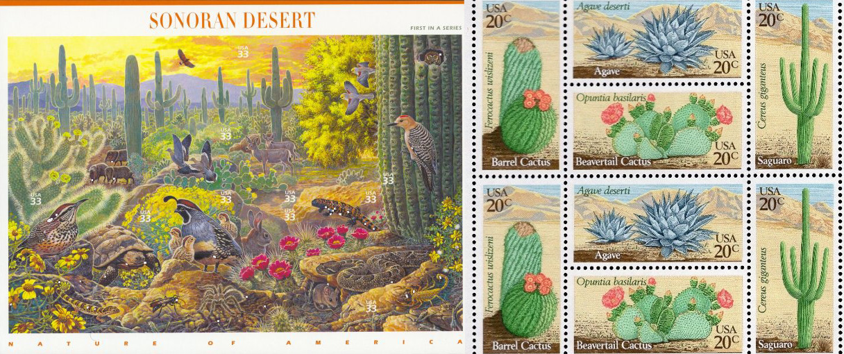 1999's Sonoran Desert ( Scott #3293 ) and 1981's Desert Plants ( Scott #1942-1945 )