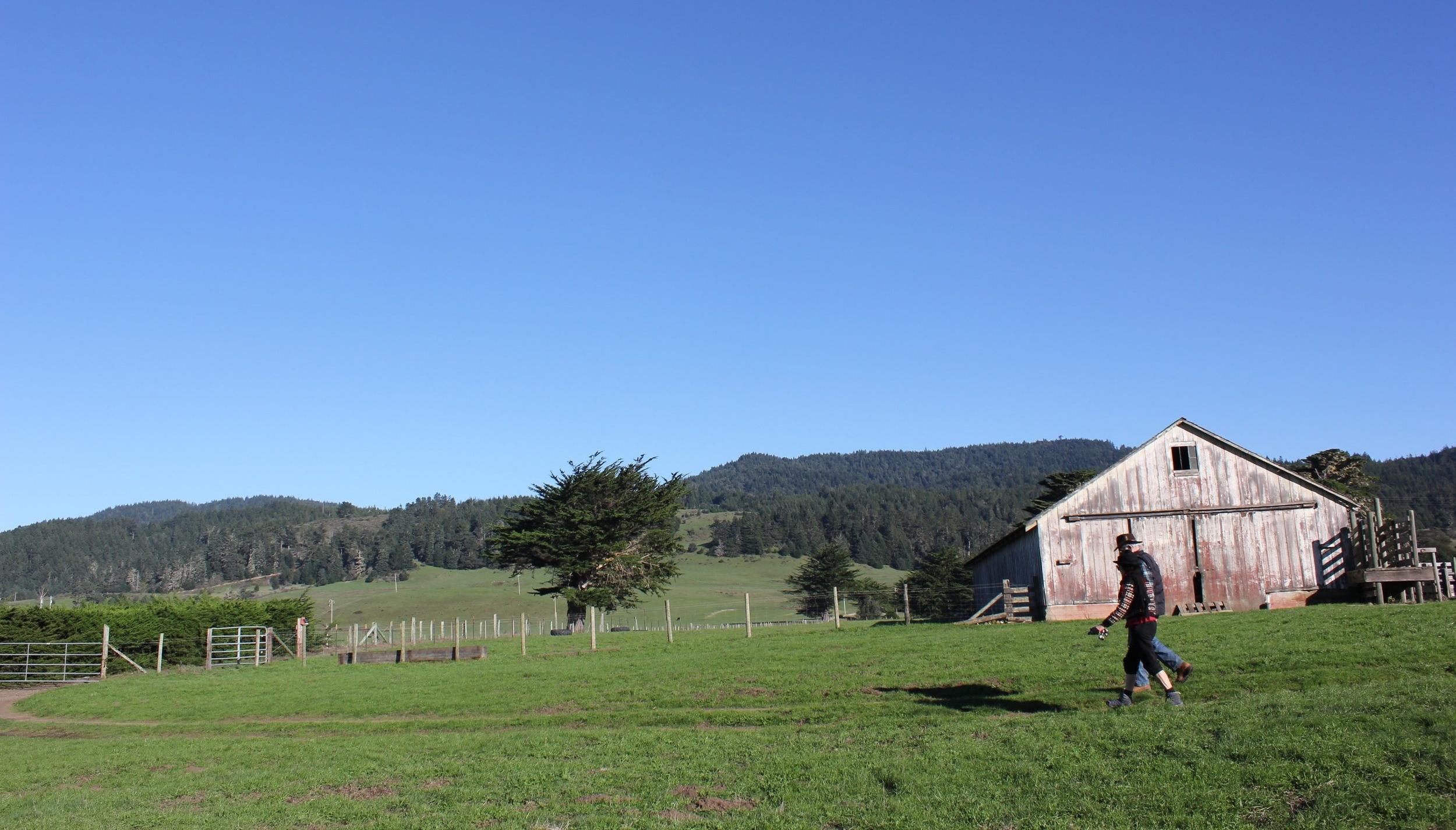 farm with people walking.jpg