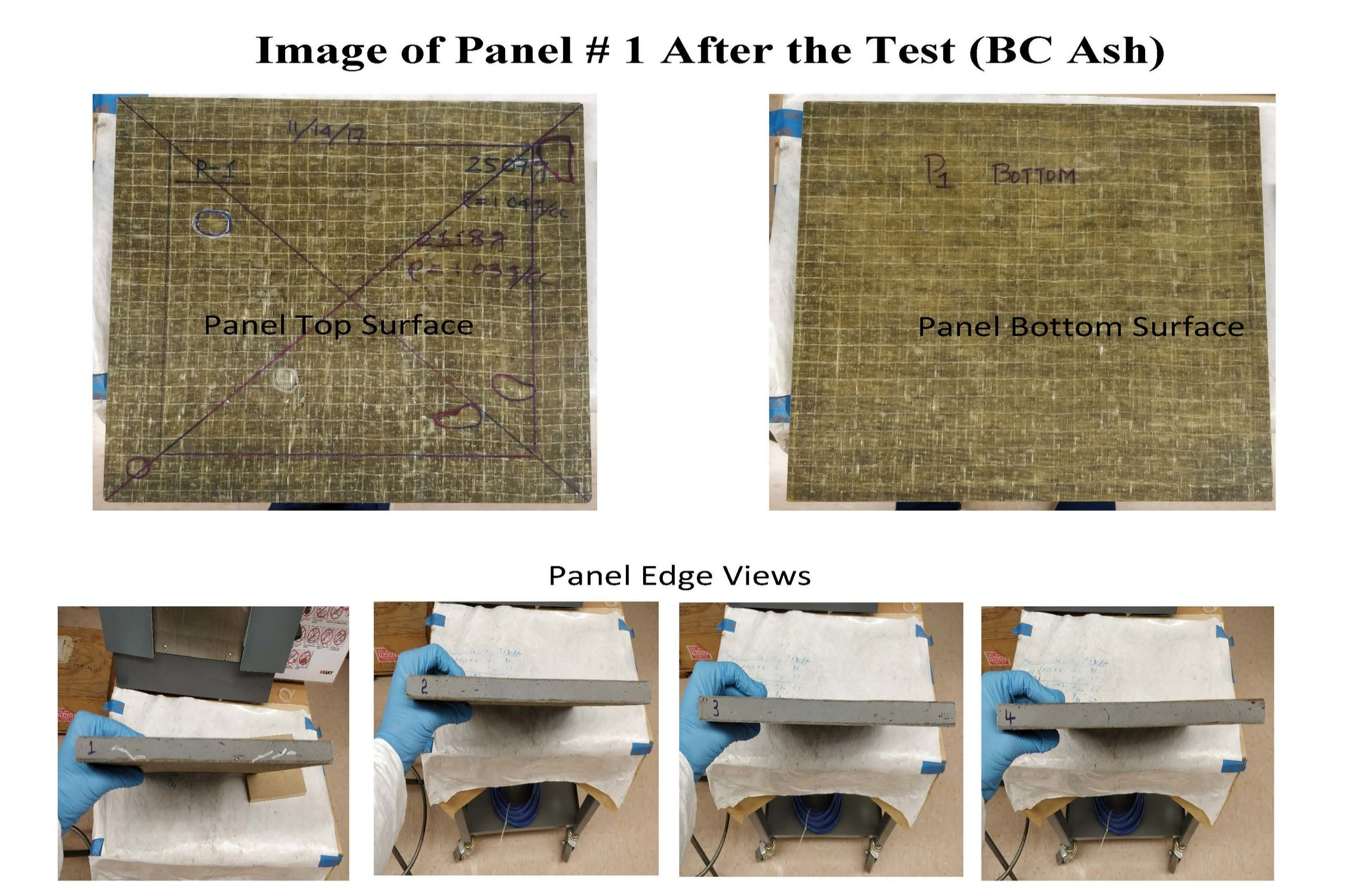 paneltest.jpg