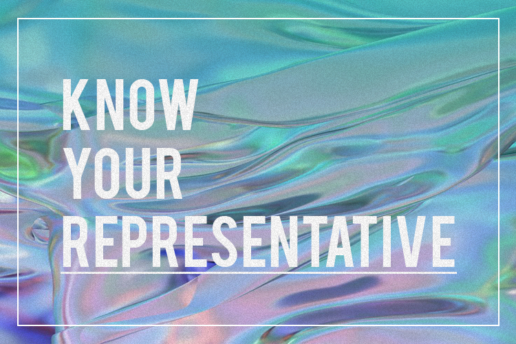 You asked:  How do I engage with them once they're elected?What are the responsibilities of my representative? How can I keep them in check? What is the criteria of a responsible representative? How will I know they're doing the work they're supposed to do?