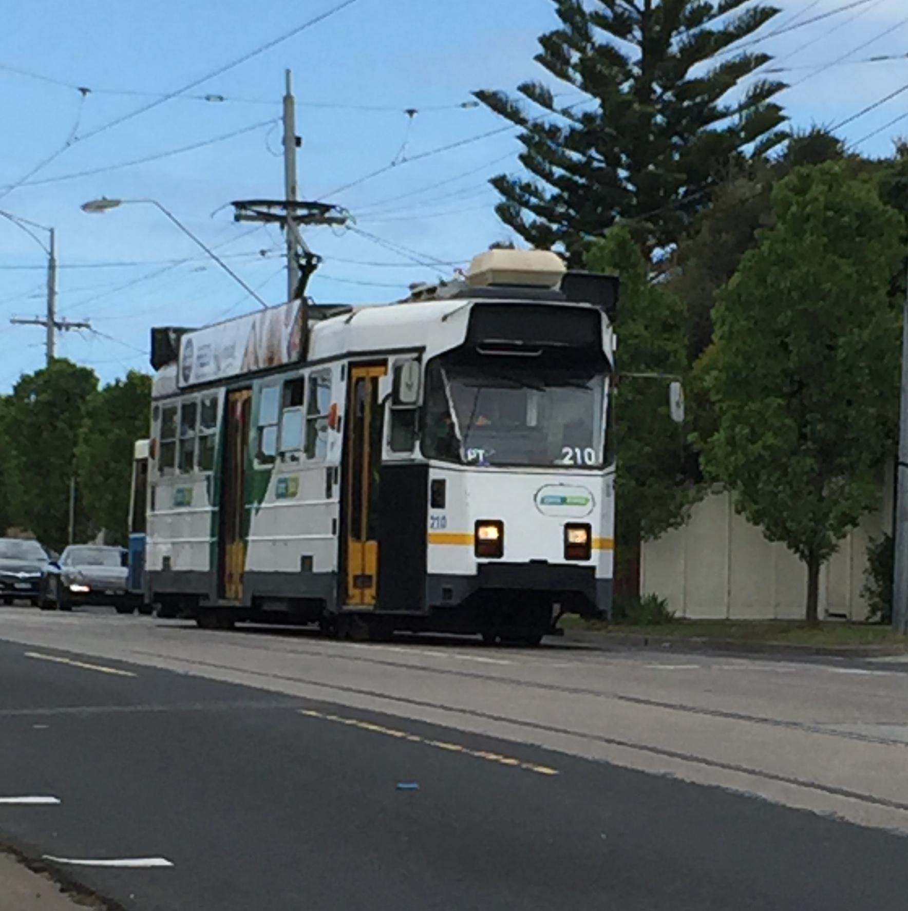 Melbourne Trams. Super convenient but also super crowded at peak commute times.