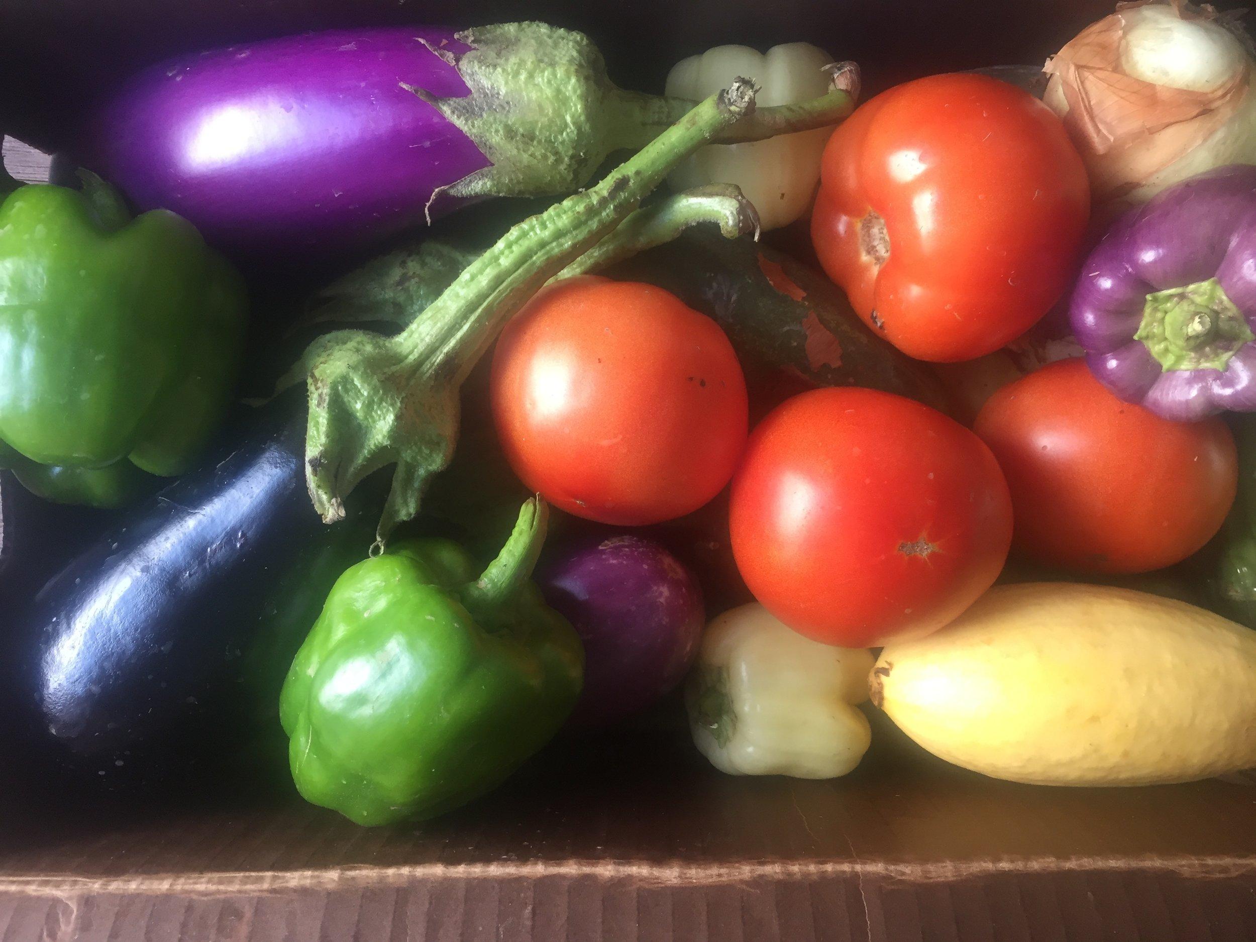 Fresh produce from  JB Organics  in Austin, TX.