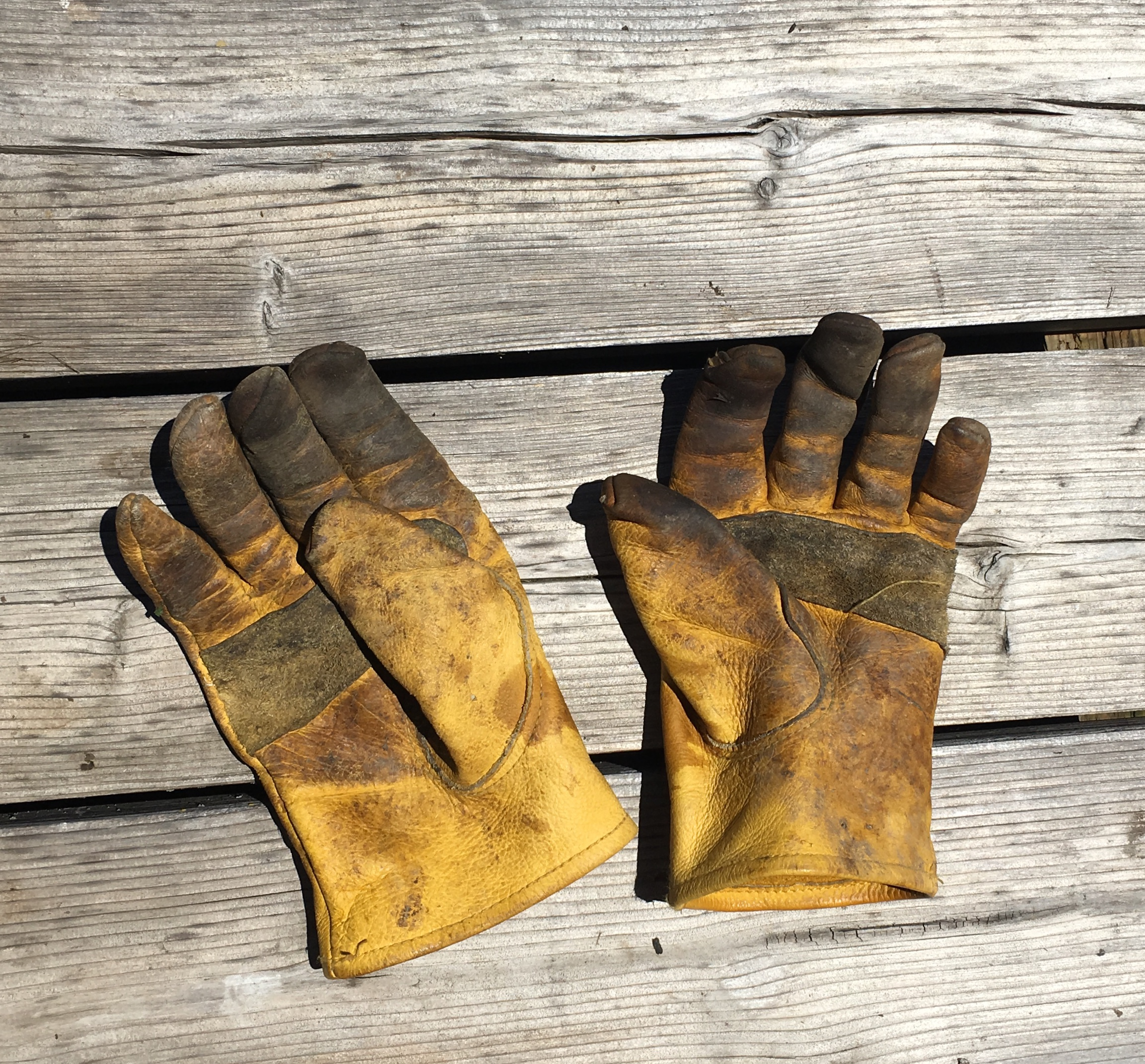 farm gloves.jpg