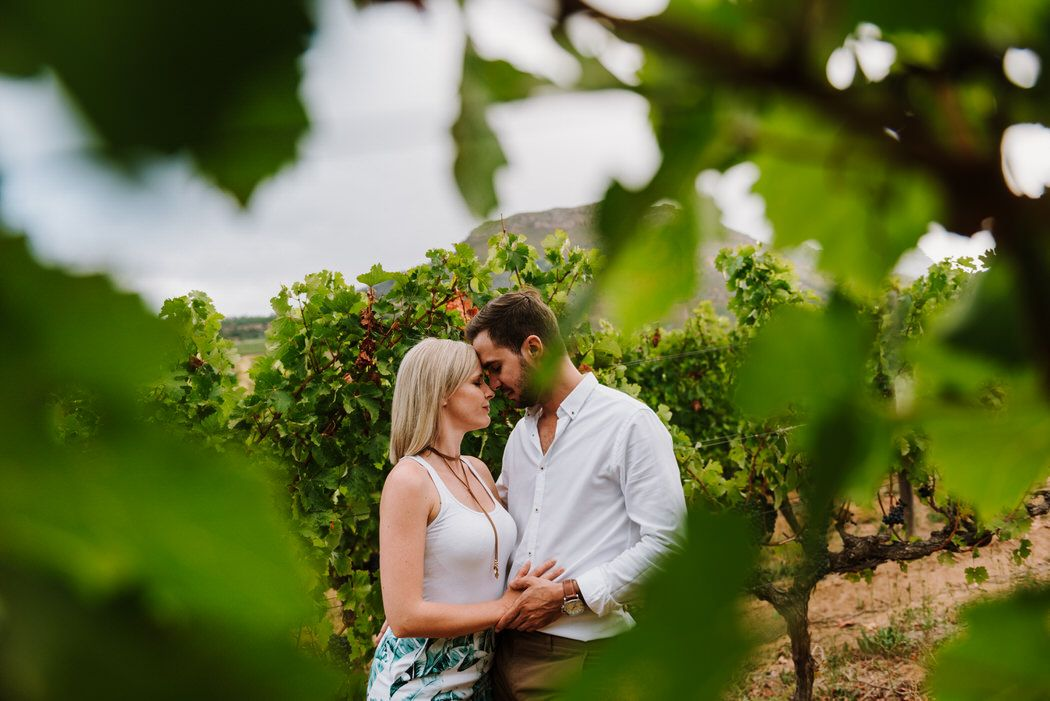 vineyard wine estate constantia engagement shoot matt masson South African wedding photographer cape town Johannesburg durban