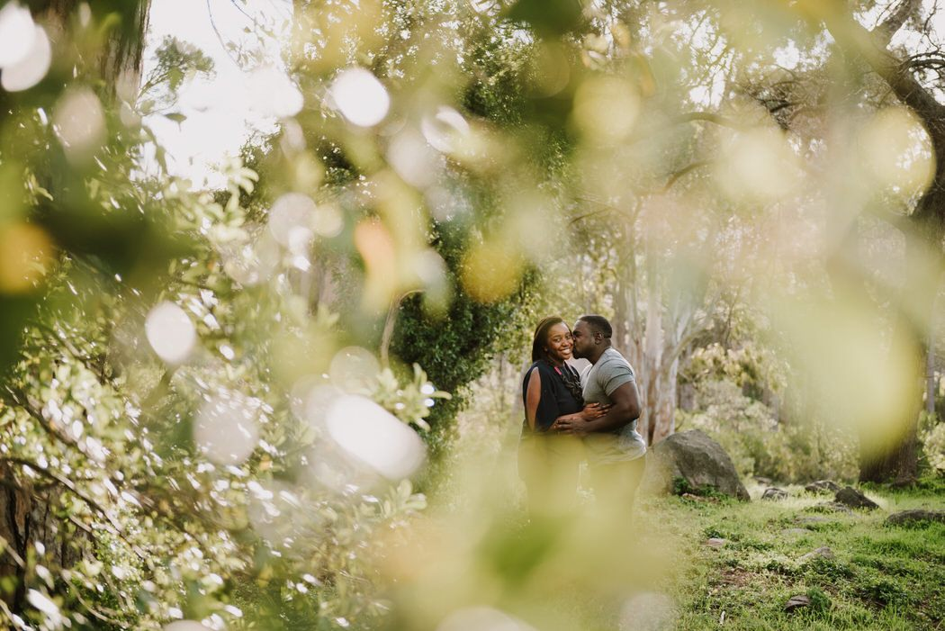 forest engagement shoot matt masson South African wedding photographer cape town Johannesburg durban
