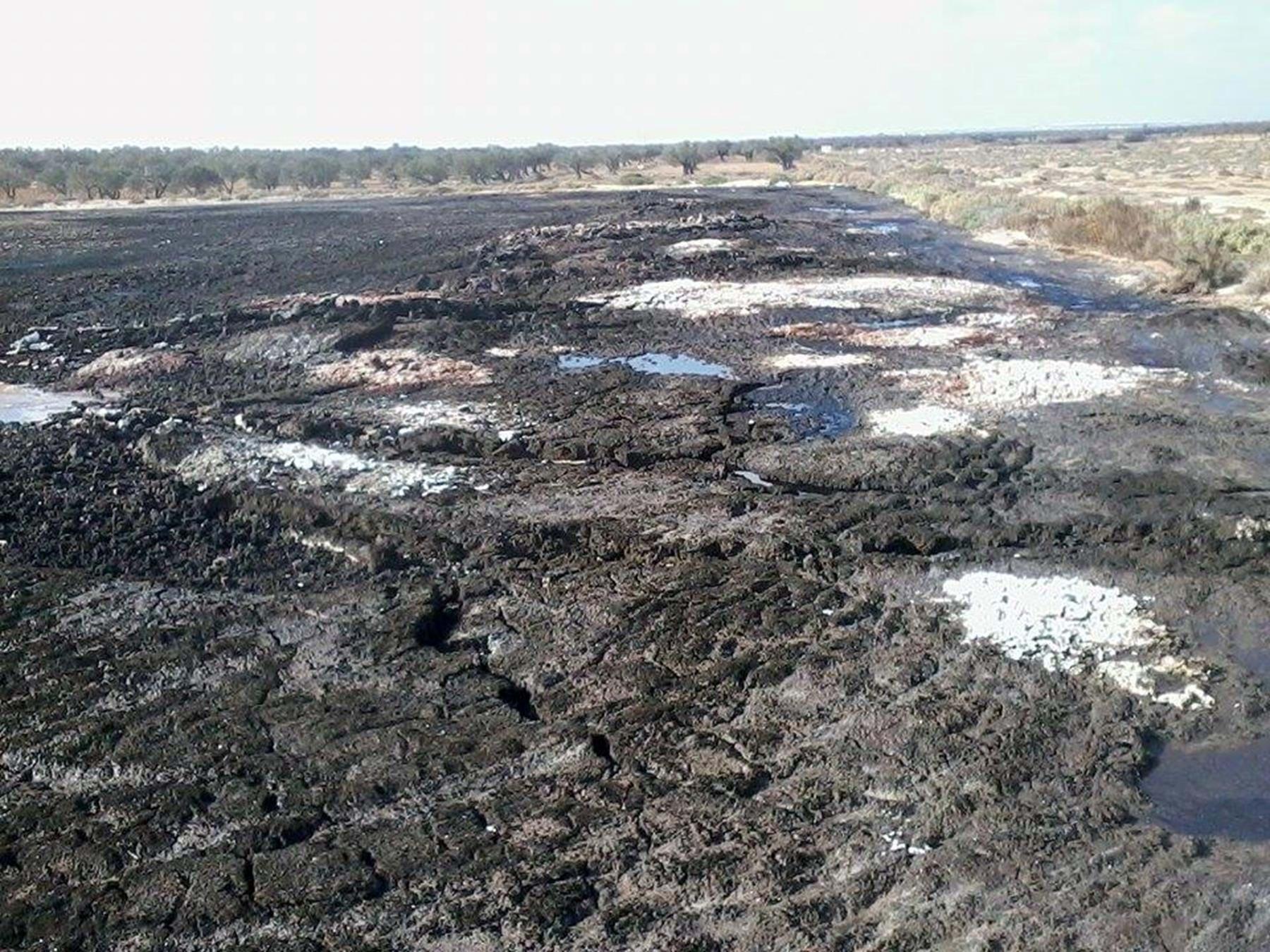 Soil pollution 2.jpg