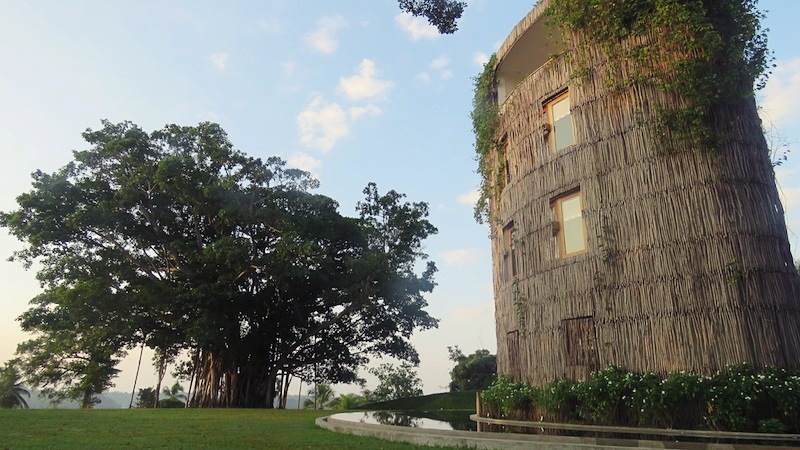 The cinnamon wood-clad Water Tower is the focal point of the property