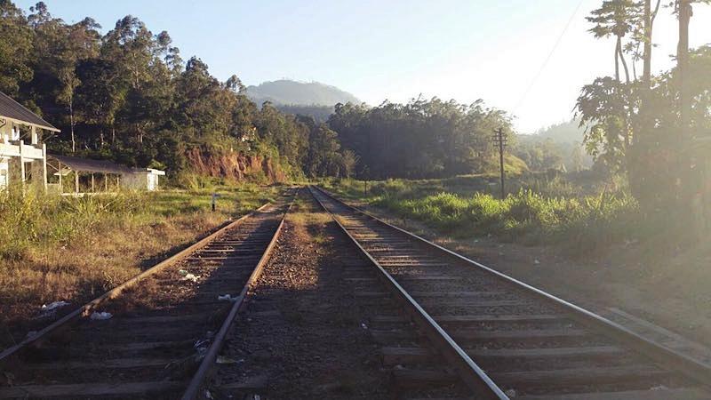 The tracks through Ella