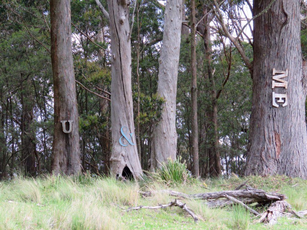 U & Me trees