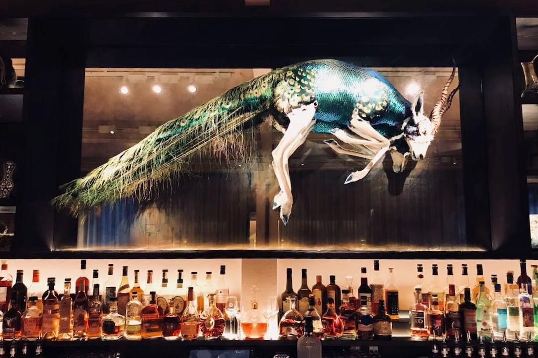 The Mandrake Waeska Bar.jpg