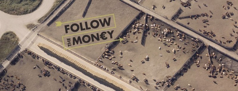 follow the money 1.jpg