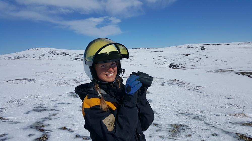 Foto: Kristin L. Austvik, Kvikne fjellstyre. ID:332