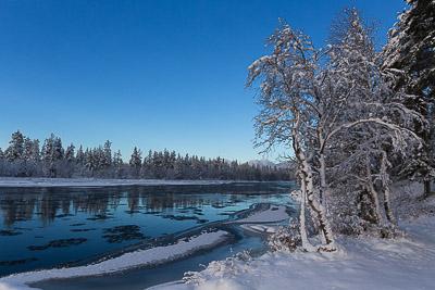 Foto: Jan Nordvålen ID:279