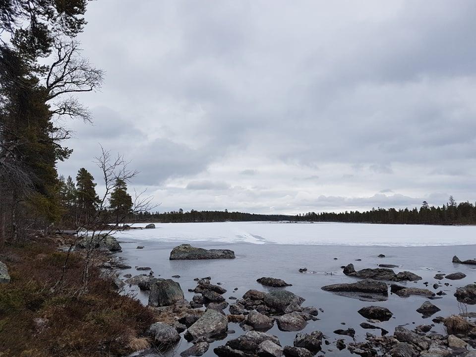 Kalven, Nordvika.jpg