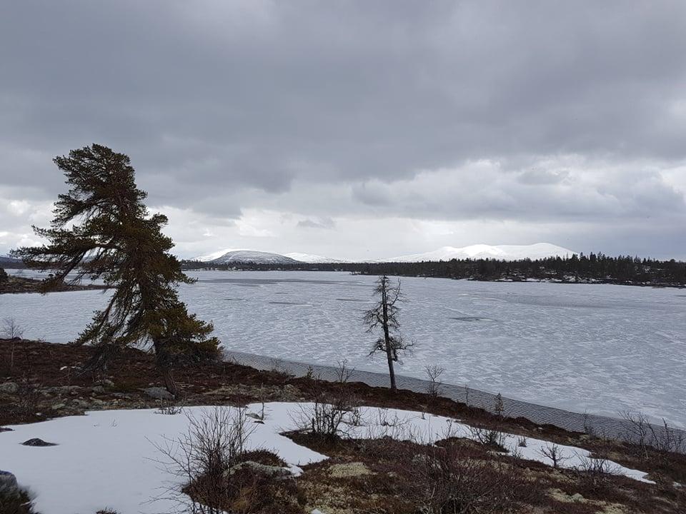 Revsjøen.jpg