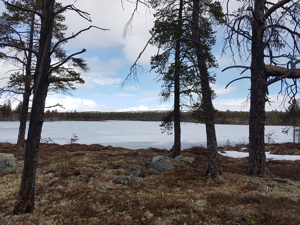Ltjsvartsjøen.jpg