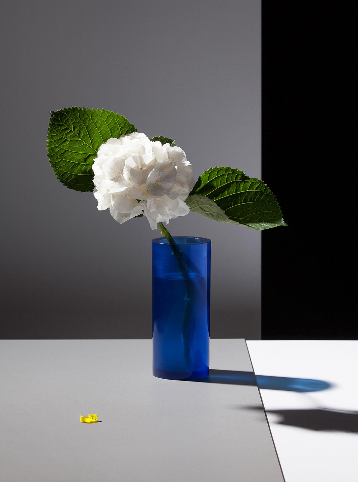 Some Flowers (HW), 2014, Fine Art Print, 101 x 75 cm