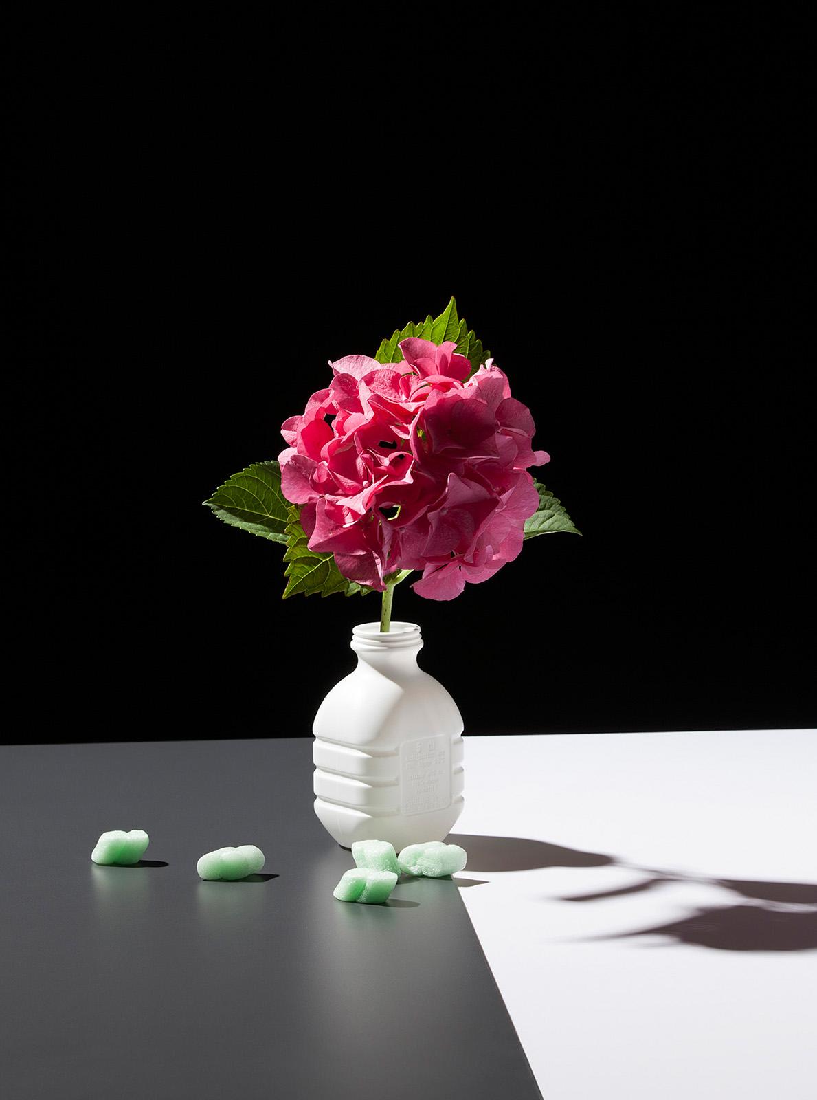 Some Flowers (HP), 2014, Fine Art Print, 57 x 43 cm