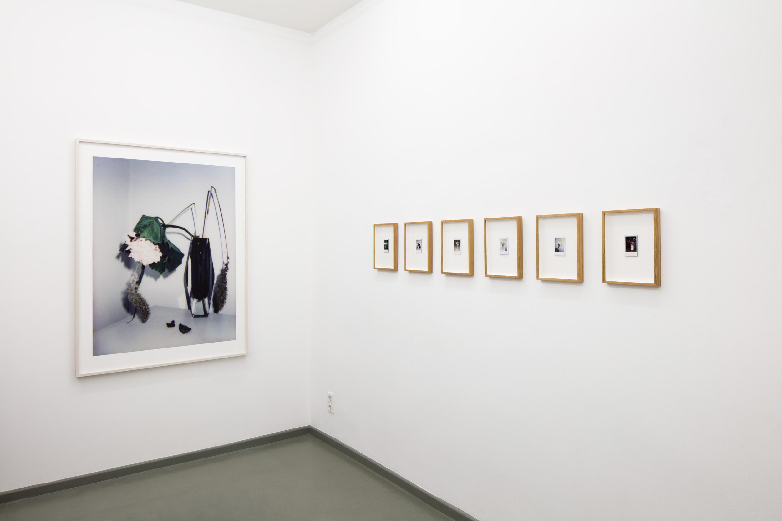 exhibition view BROKEN FLOWERS 1-6, Rasche Ripken, 2018