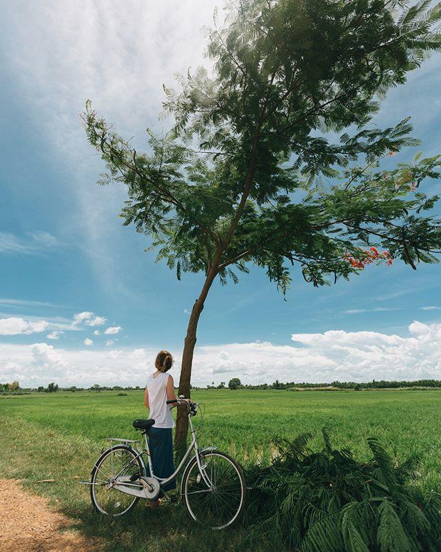 4 of 5 from Cambodia :  We had the weekends free to explore Battambang. By far my favorite thing was bike rides through the rice fields. 🚲 🍚 🚲 🍚  #Cambodia #southeastasia #cambodiatrip #igerscambodia #asia #artofvisuals #travel #adventure #goexplore #canon #vsco #vscocam #5dmkiii #thecreatorclass #exploretocreate #picoftheday #lightmob