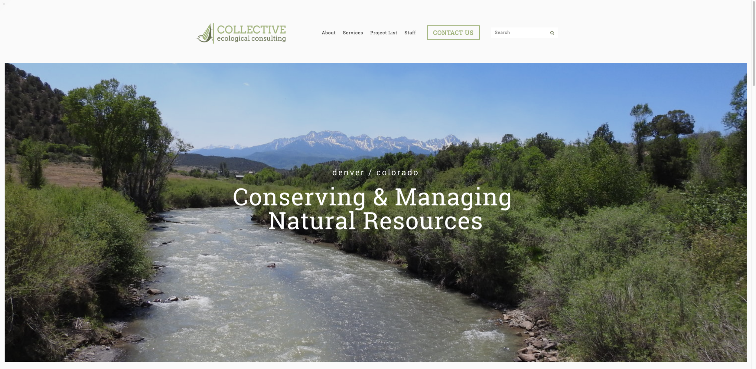 Eco Collective Website