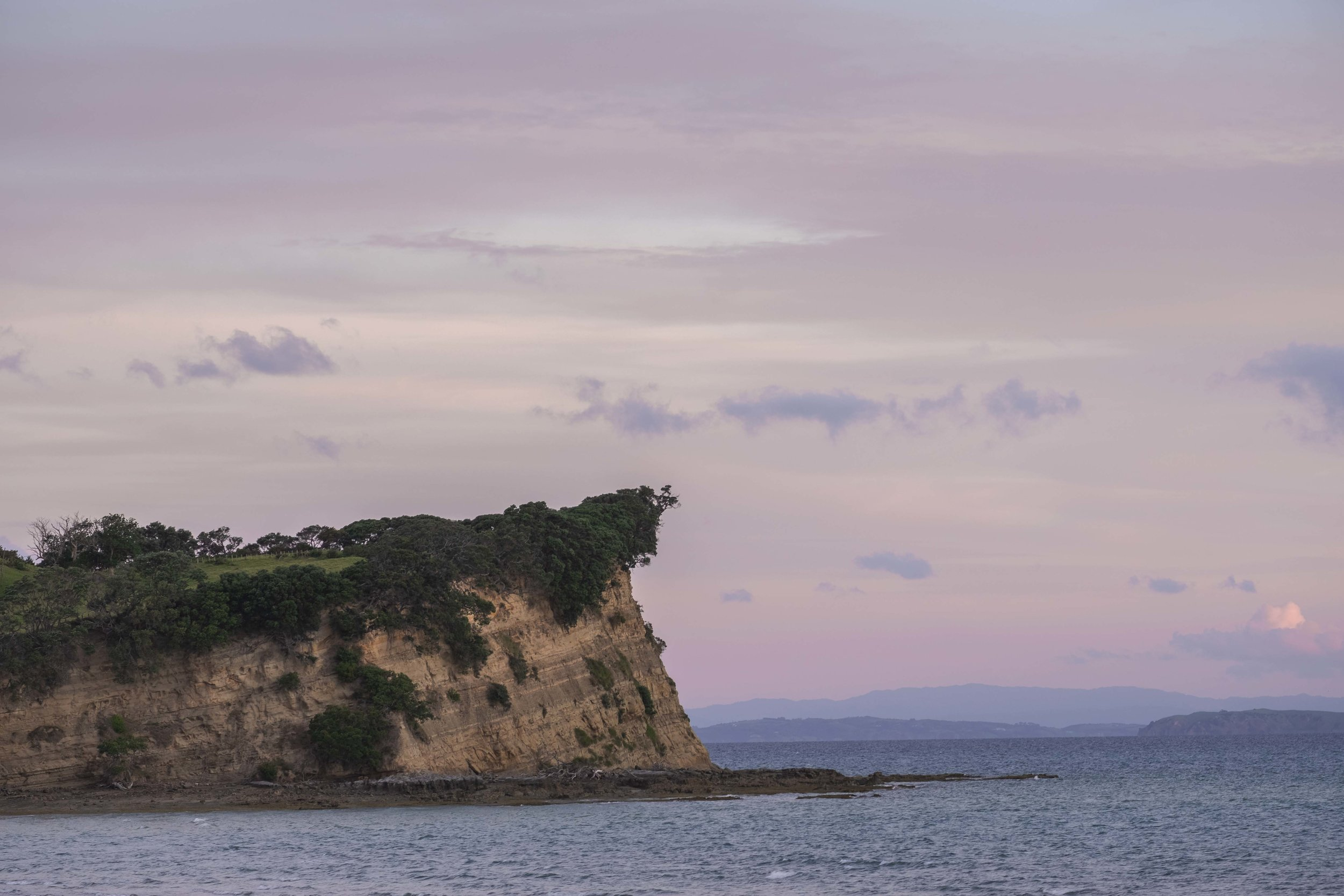 A cliff at Shakespear Regional Park.