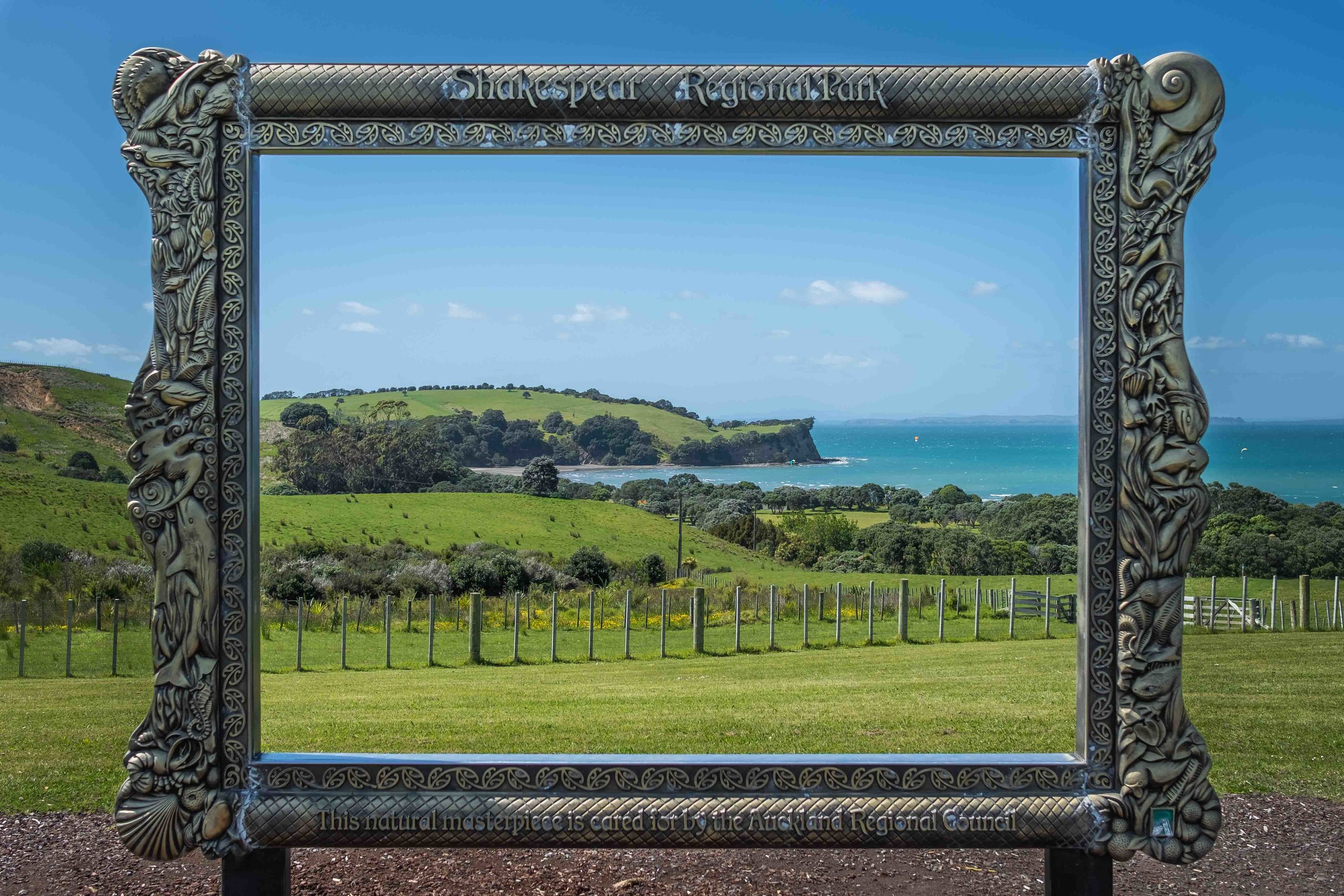 A cool frame at the entrance of Shakespear Regional Park that encapsulates our area pretty well!