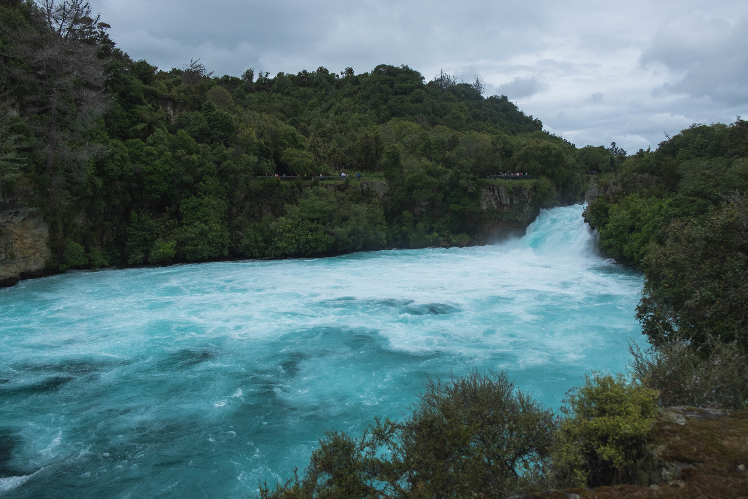 Huka Falls! The water was definitely the bluest we've seen!