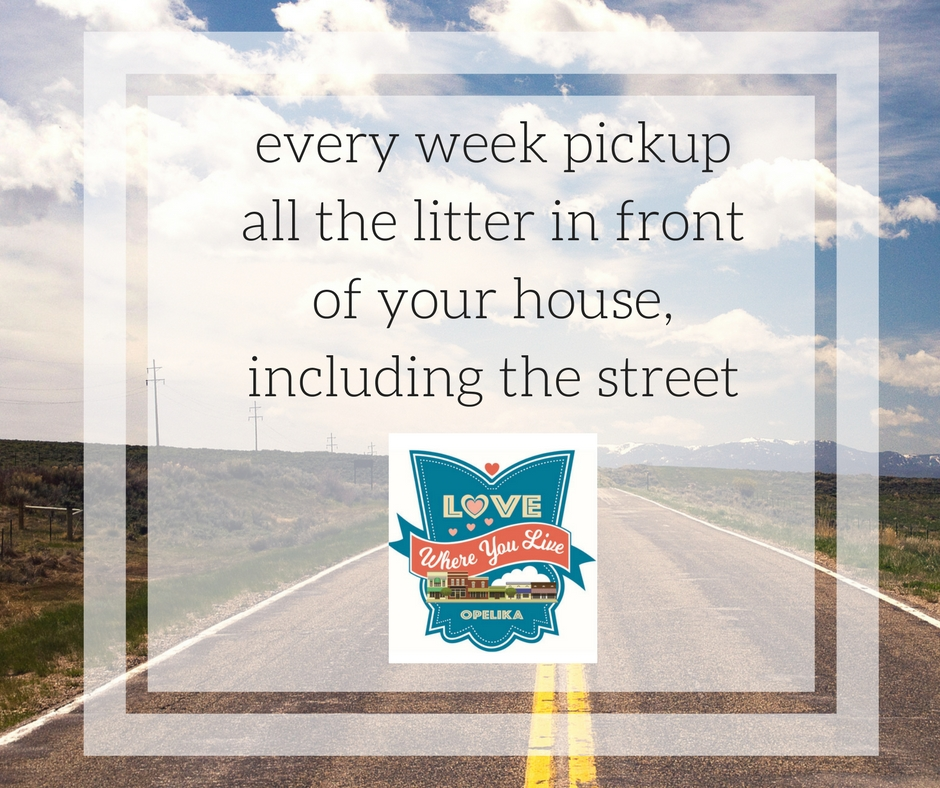 every week pickup all the litter in front of your house, including the street.jpg