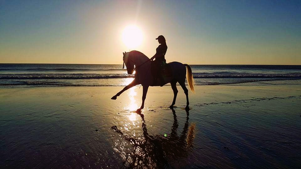 Odette riding horse performing dressage on a beach in Andalusia Spain