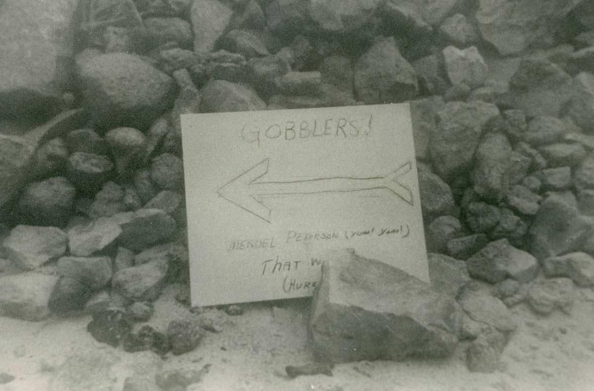 Gobblers---Mendel-Peterson-contrast.jpg