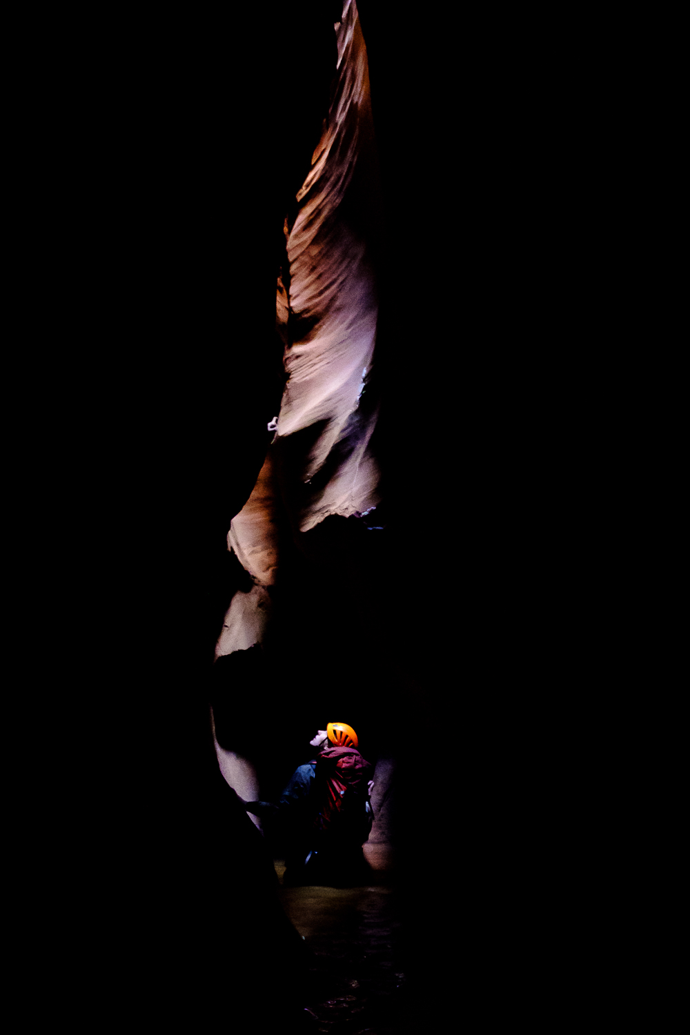 Becca looks up the fluted sandstone walls in the deoths of Ringtail Canyon, UT.