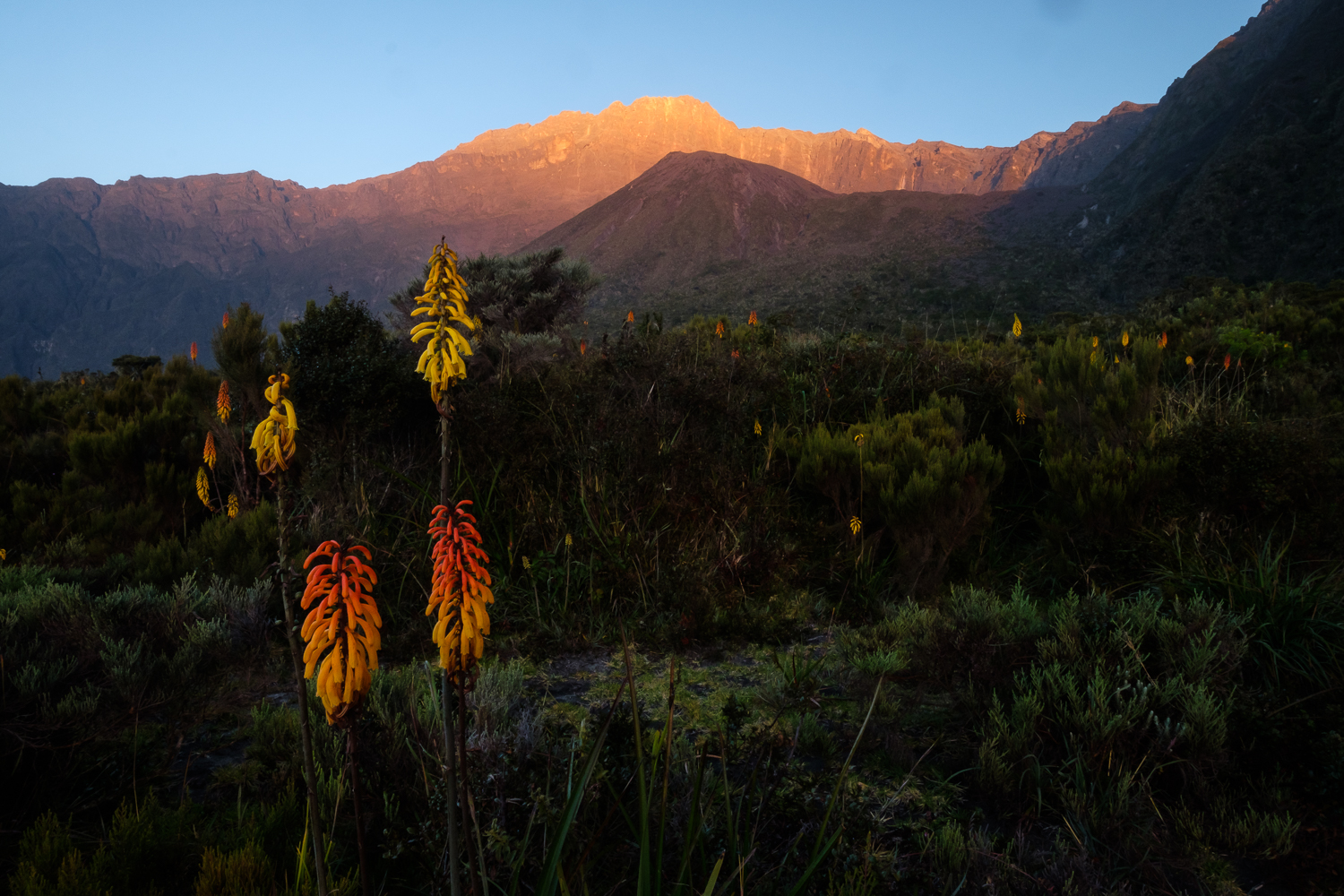 First light on the summit of Mount Meru from the floor of the volcano's crater, Tanzania.
