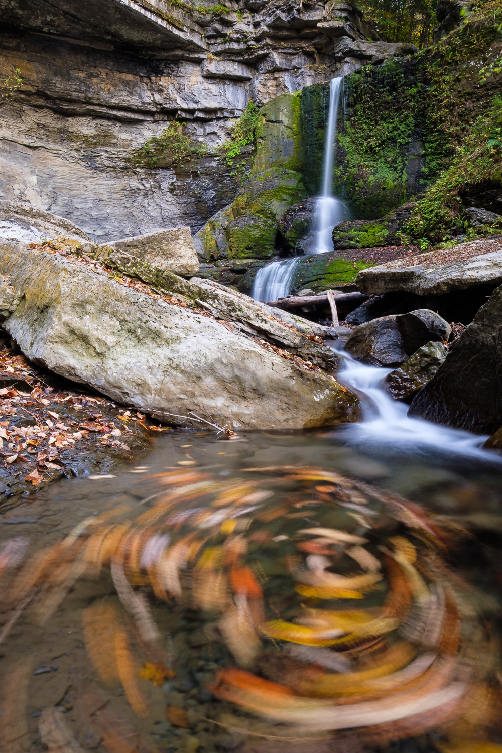 Fallen leaves swirl beneath the famous Cowsheds of Fillmore Glen State Park, near Moravia, NY.