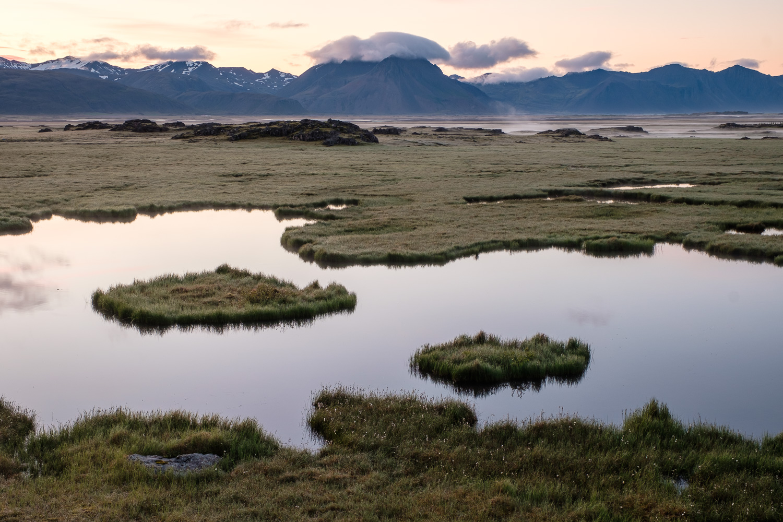 Roadside ponds south of Laekjavik