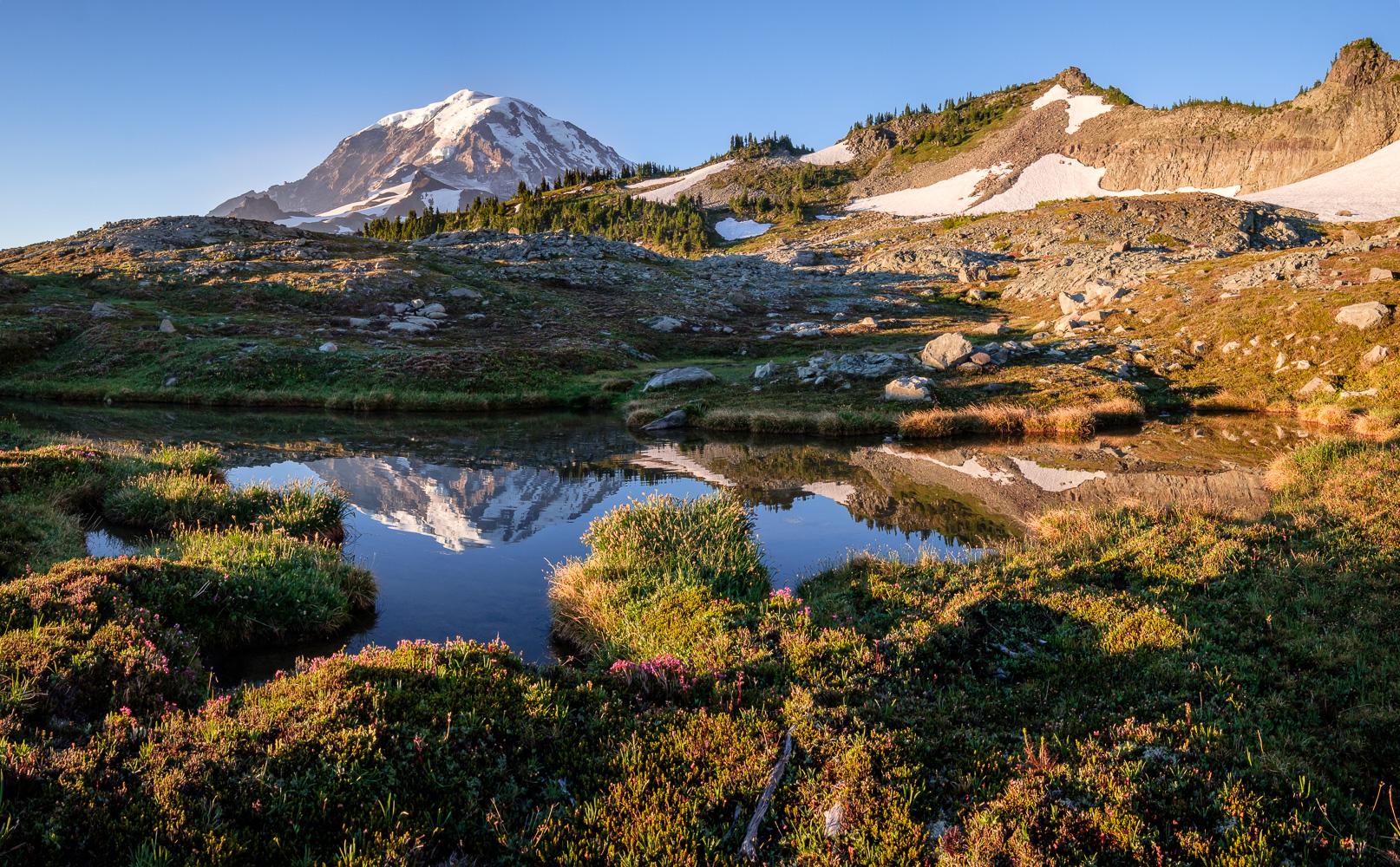 A small tarn beneath Knapsack Pass reflects Mount Rainier