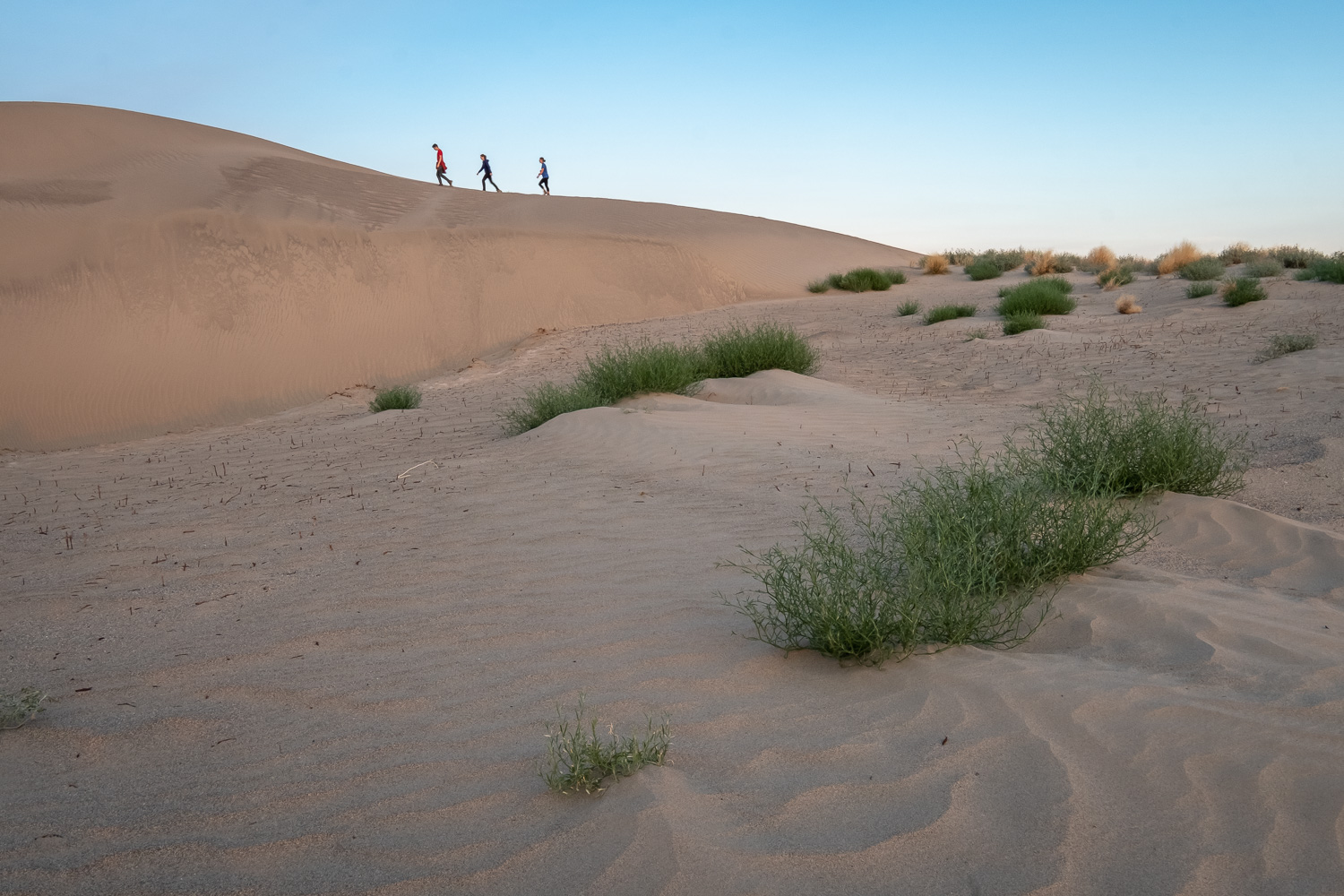 Sunrise at sand dunes in Hanford Reach National Monument