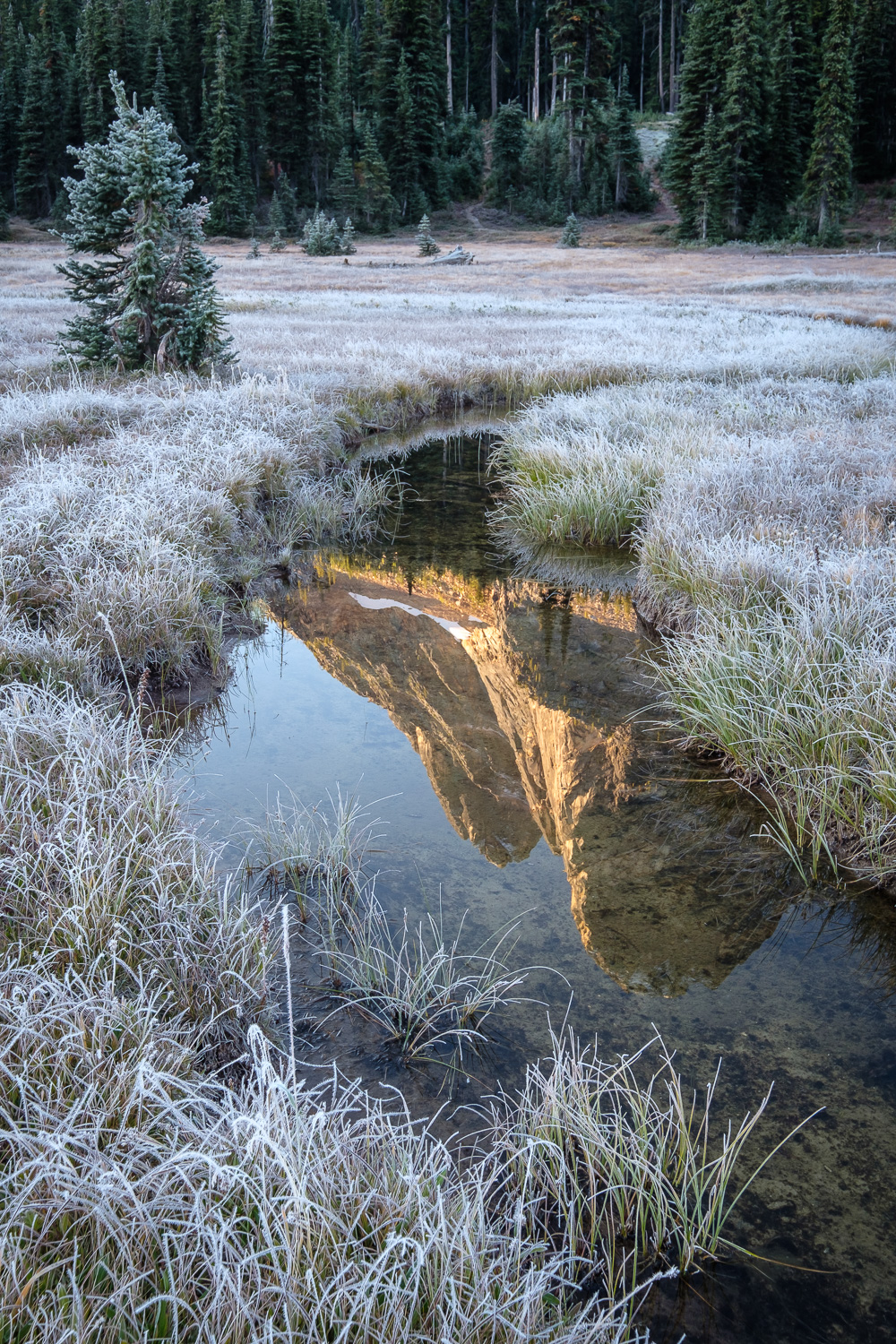 Liberty Bell reflected in the headwaters of State Creek on a chilly morning