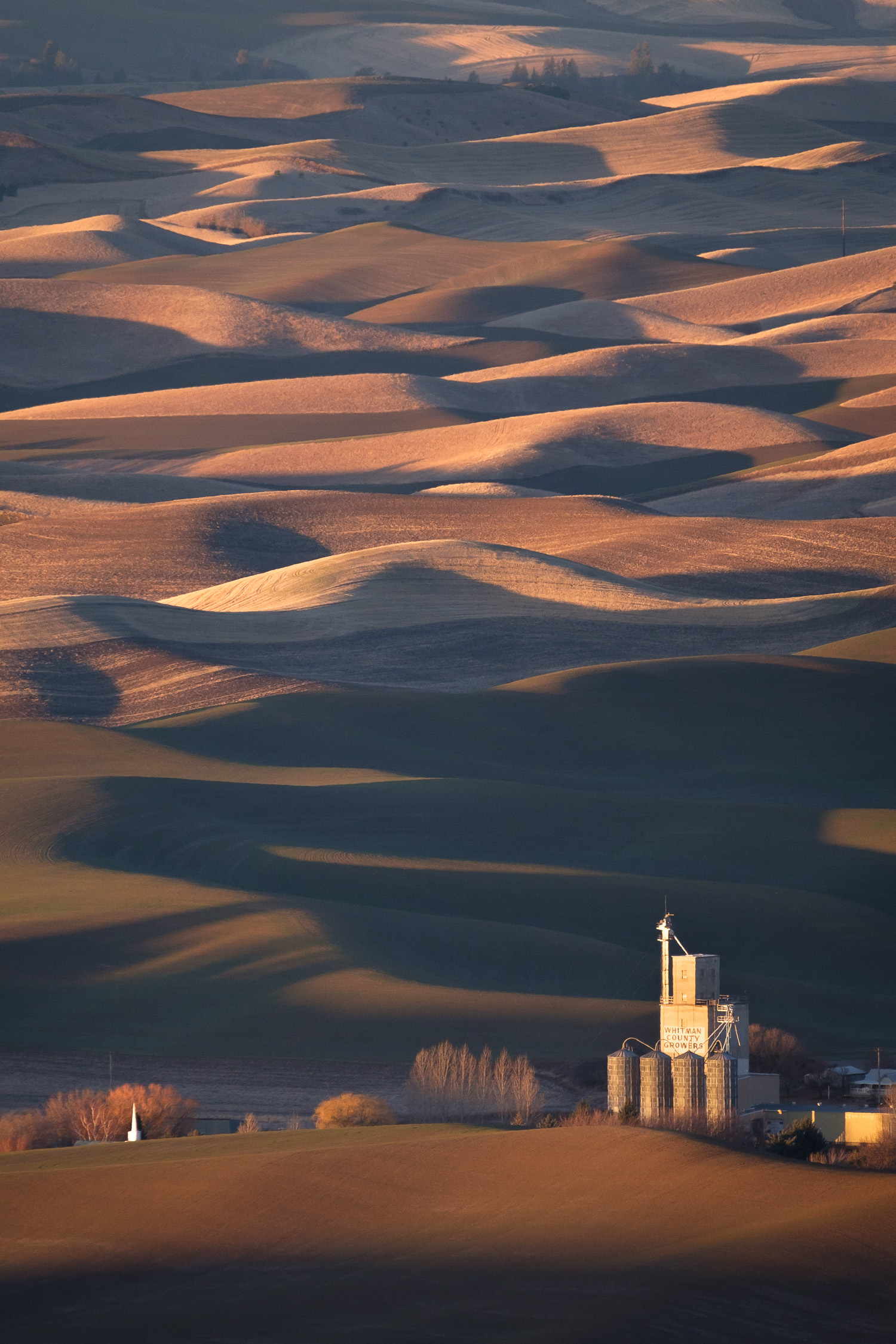 The Whitman County Growers grain elevator near Steptoe, WA, from the summit of Steptoe Butte