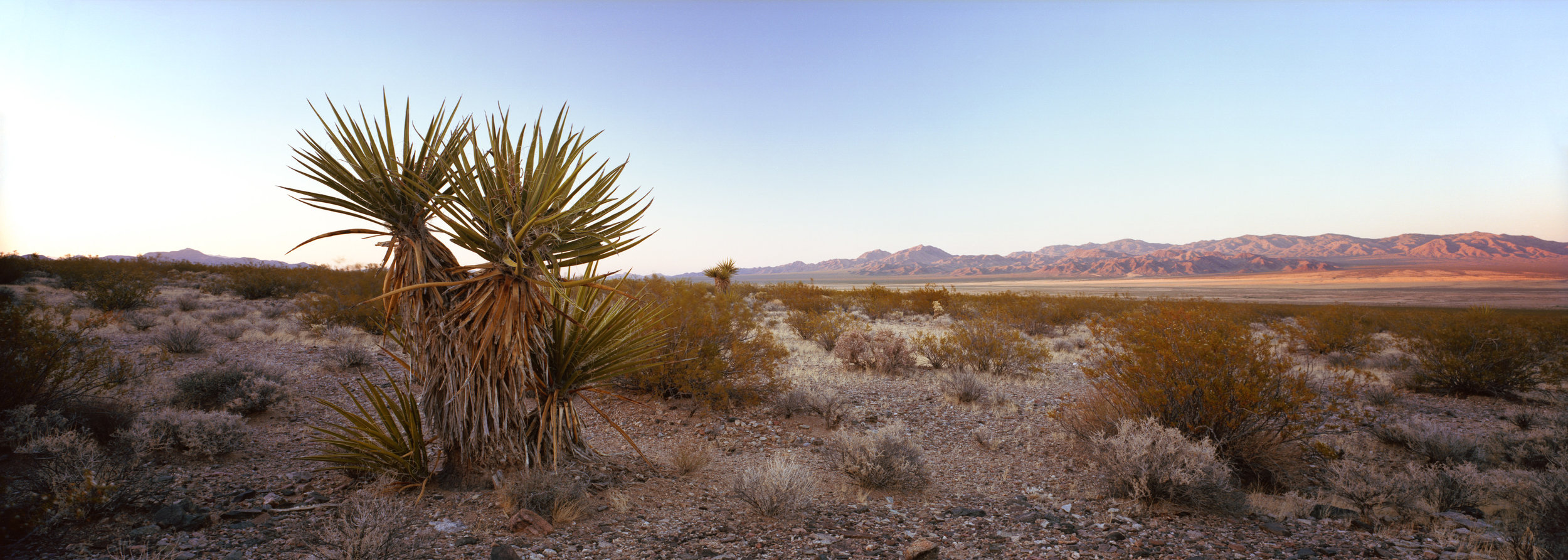Nevada-California border at sunset, in Mojave National Preserve.  Ektar 100, 4 sec, f/22.