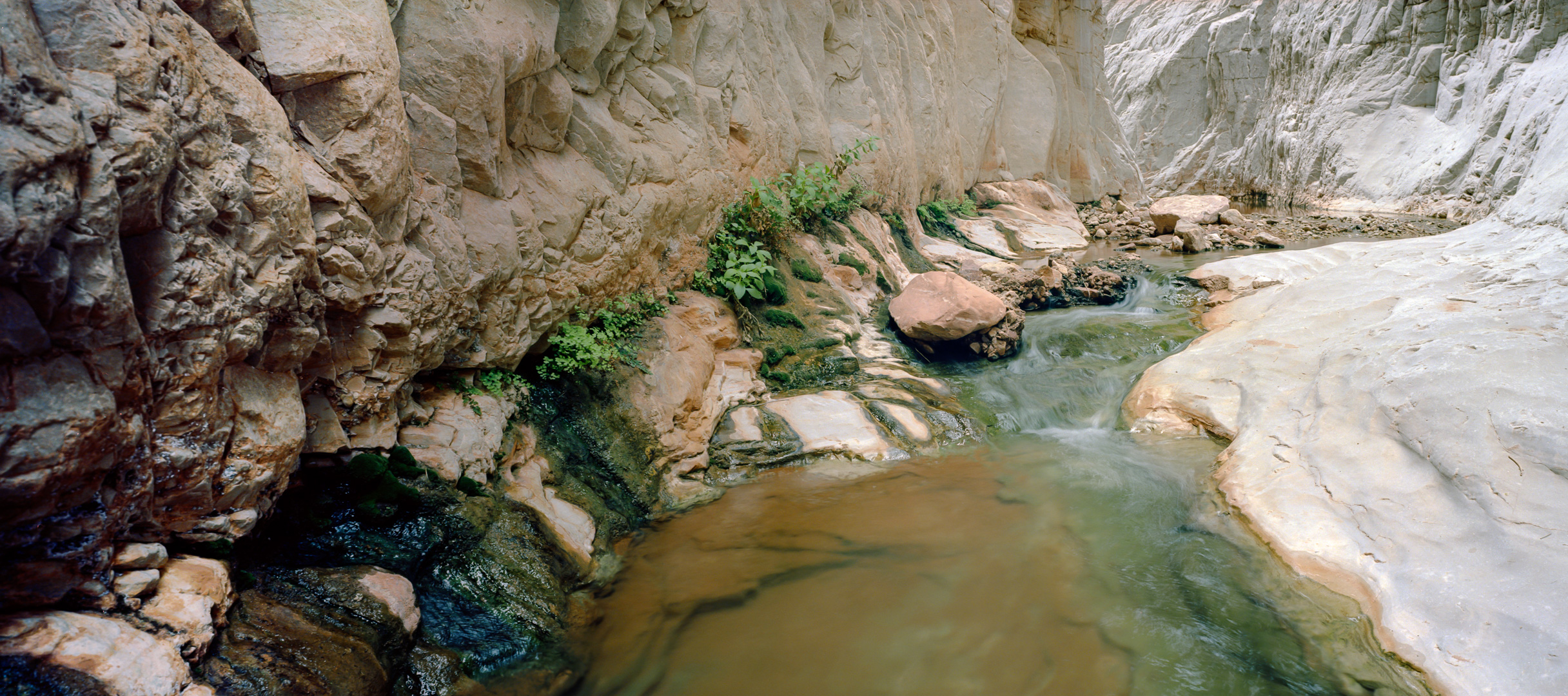 Stream in Scotty's Hollow. Ektar 100, 1/2, f/18.