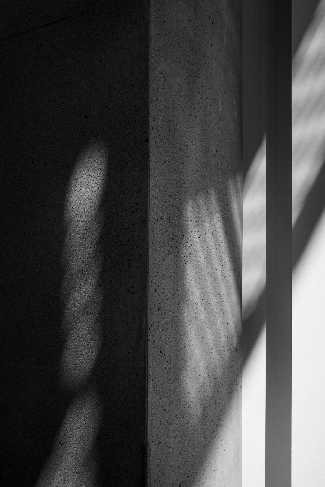 cse_shadows-4.jpg