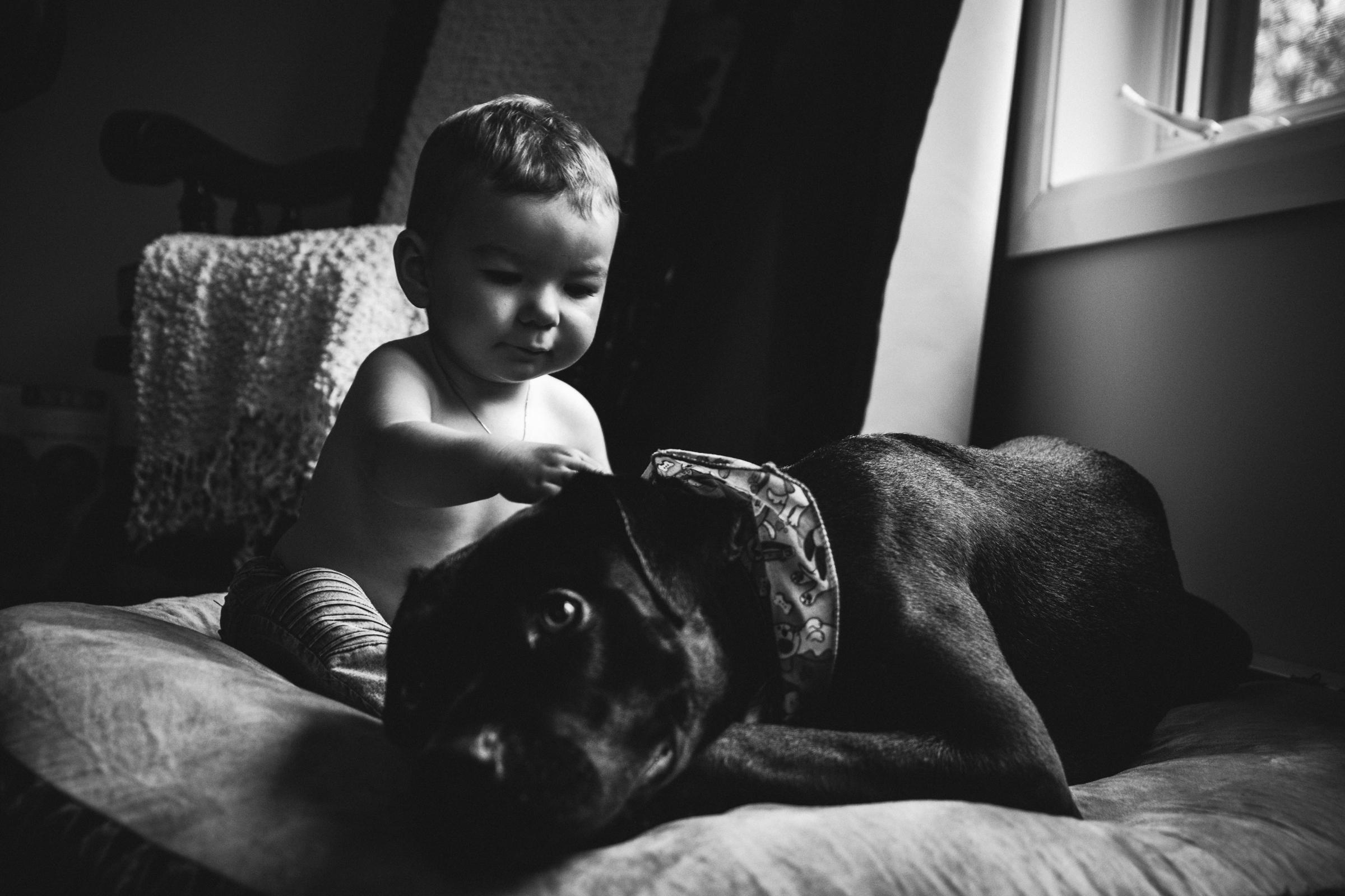 photo-noir-et-blanc-garcon-avec-chien-photographe-de-famille-a-domicile-montreal-victoriaville-enfant-lifestyle-65.jpg
