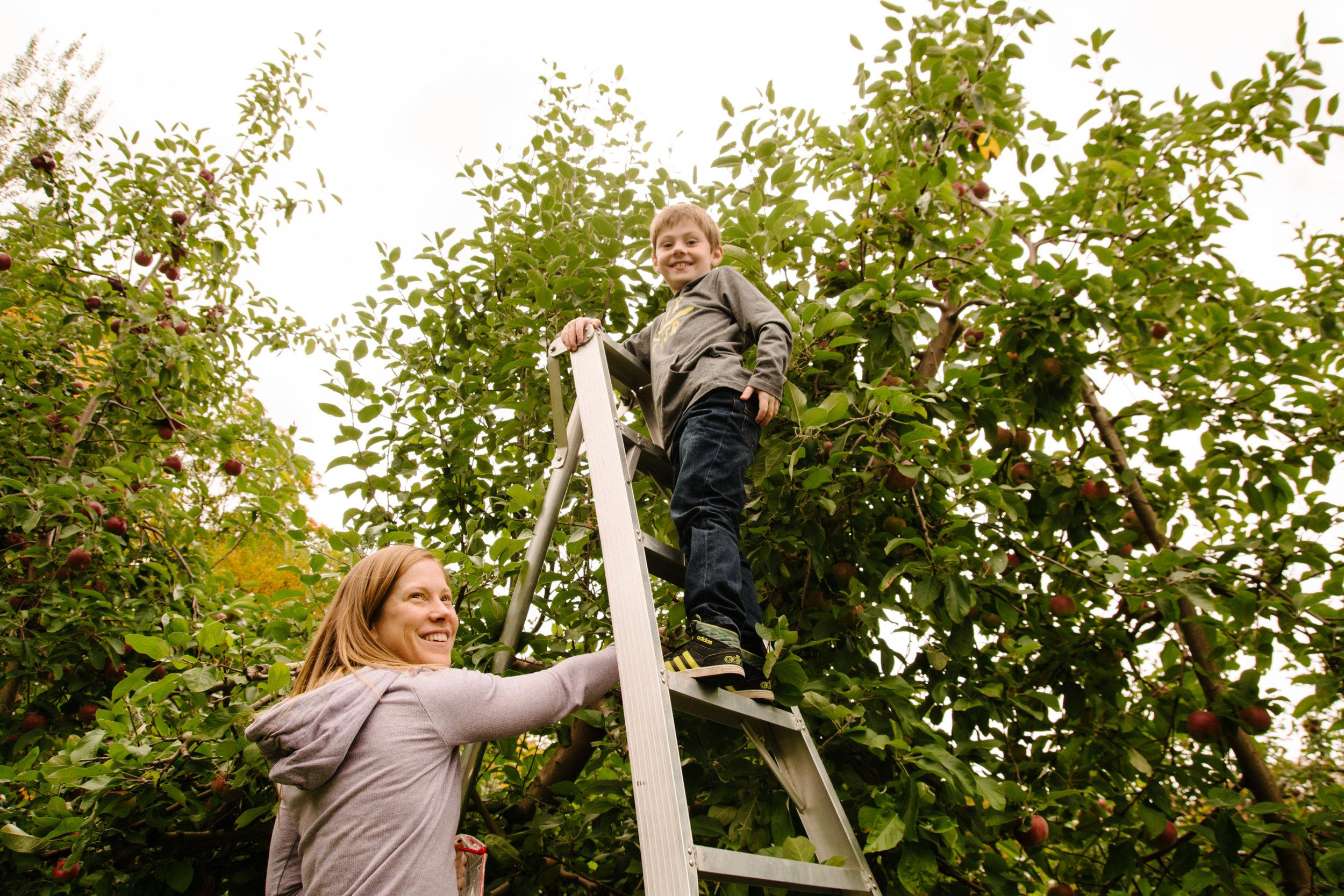 mini-seance-aux-pommes-verger-des-bois-francs-plessisville-photographe-famille-victoriaville-montreal-3.jpg