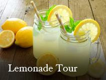 lemonade_tour.jpg