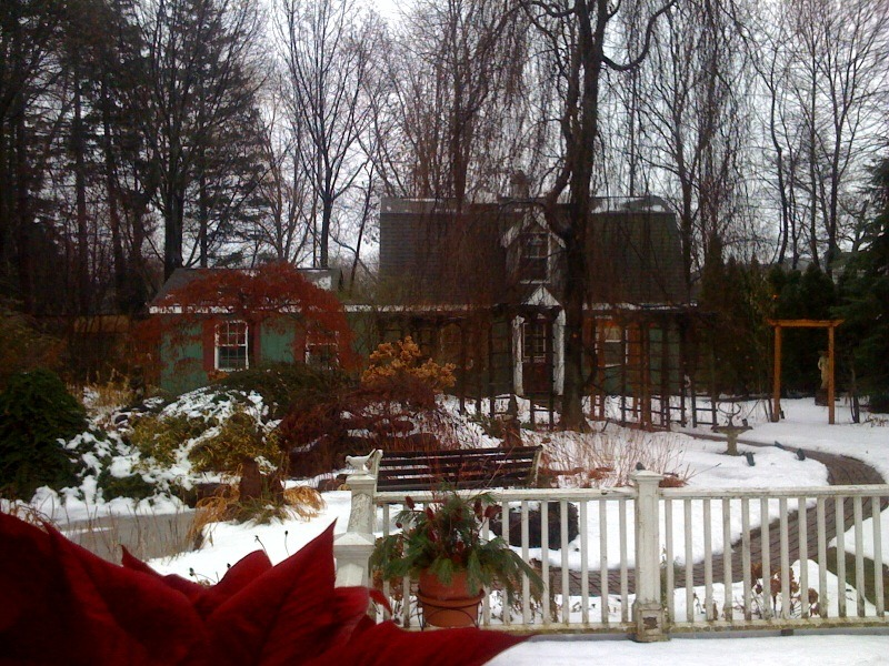 Angie's garden is beautiful even in the winter months!